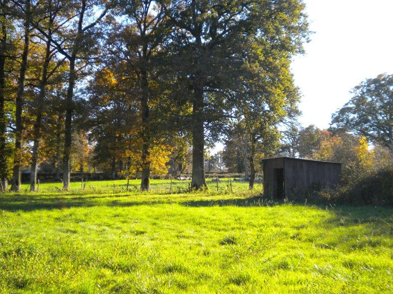 Achat terrain oradour fanais 16500 acheter terrain for Agrandissement maison sur terrain non constructible